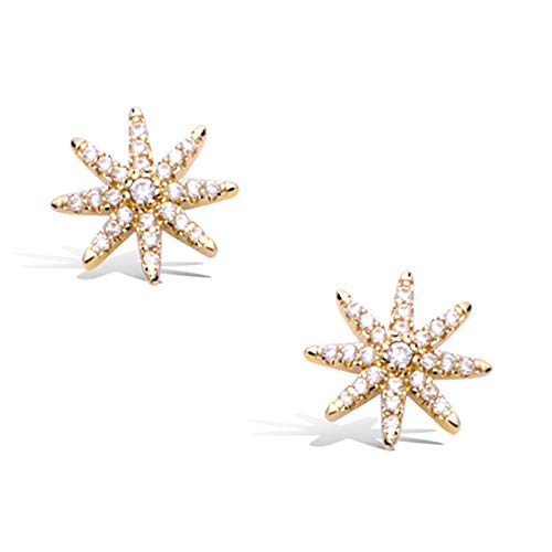 FANCIME 14K Yellow Gold Filled Cubic Zirconia CZ Small Star Burst Compass Stud Earrings, Hypoallergenic Fashion Jewelry Gift for Mom Girls Women