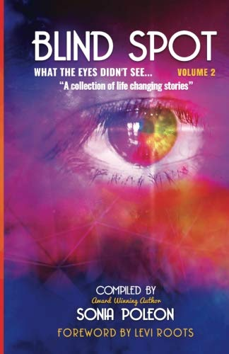 Blind Spot Volume 2: What the eyes didn't see ()