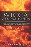 Wicca Magical Deities: A Guide to the Wiccan God