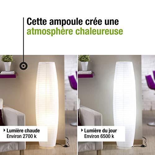 lexman - Bombilla LED 5.5 W (estándar équiv 40 W) E27 3000 K: Amazon.es: Iluminación