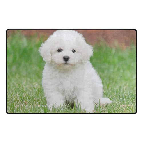 (pengyong Bichon Frise Dog Non-Slip Door Mat Home Decor Door Carpet Entry Rug Floor Mat for Outdoor/Indoor Uses)