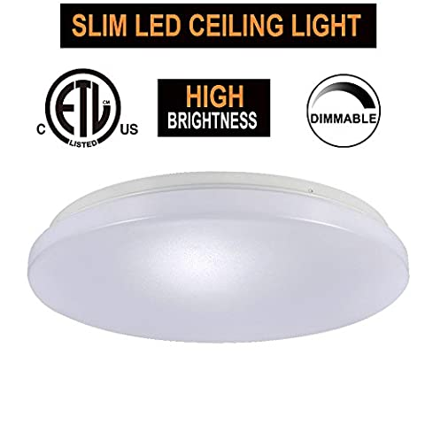 15W 11-Inch Warmlight White Dimmable LED Ceiling Lights, 100W Incandescent (50-100W Fluorescent) Bulb Equivalent, 2700K, Ceiling Light Fixture, Ceiling Lighting, Flush Mount Light - Fluorescent Step Light