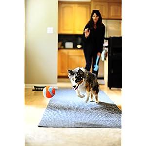 Petmate Chuckit! Indoor Ball