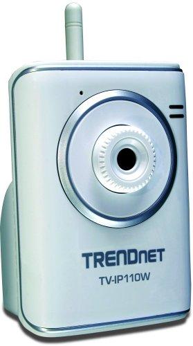 (TRENDnet SecurView Wireless Internet Surveillance Camera TV-IP110W (Silver))