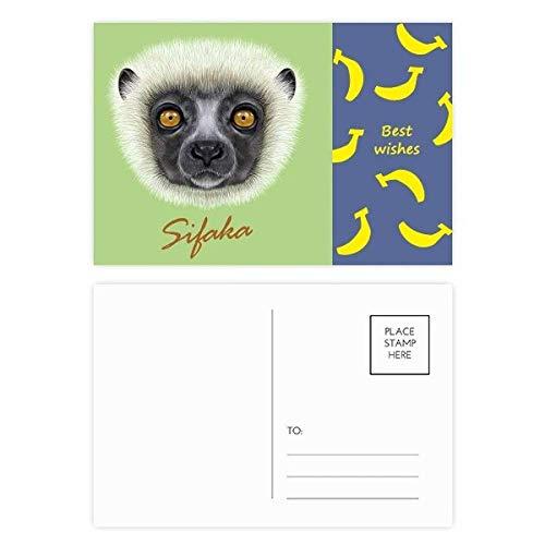 White Fluffy Sifaka Monkey Animal Banana Postcard Set Thanks Card Mailing Side 20pcs