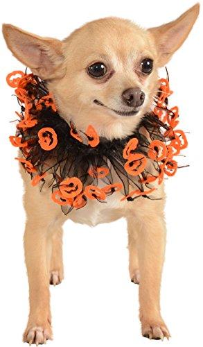 Rubie's Jack-O-Lantern Black and Orange Fancy Pet Collar, Large - Extra (Extra Large Dog Princess Costume)
