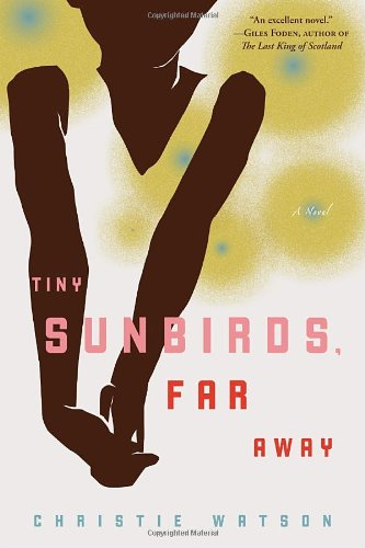 Book cover for Tiny Sunbirds, Far Away