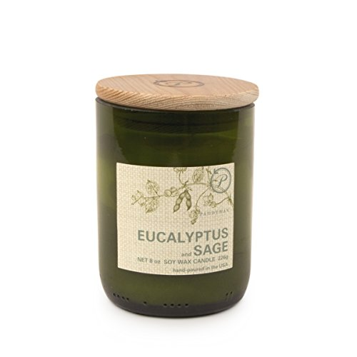 Paddywax Eco Collection Scented Soy Wax Jar Candle, 8-Ounce, Eucalyptus & - Soy Eucalyptus Scented Wax