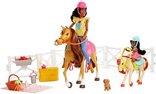 (Barbie Hugs N Horses Playset, Brunette)