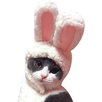 Amazon.com: Rubie's Bunny Ears for Your Pet, Small/Medium