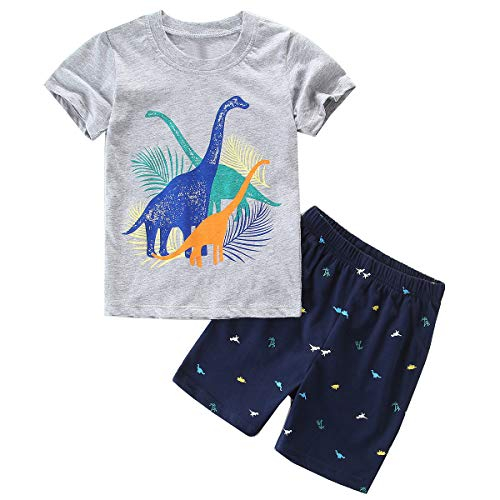 - ECOLIVZIT Boys Summer Clothes Short Set Dinosaur Shirt 2 Pieces Outfit 6T Grey Tshirt + Navy Blue Shorts