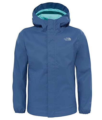 ropa marca north face