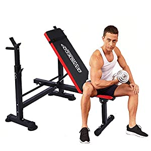 Adjustable Weight Bench Incline Seat Multi-Function Folding weight benches Fitness Workout Barbell Rack for Strength Training Home Gym