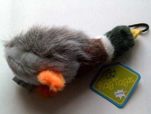 Mini Quacking Mallard Duck Dog (Quacking Duck)