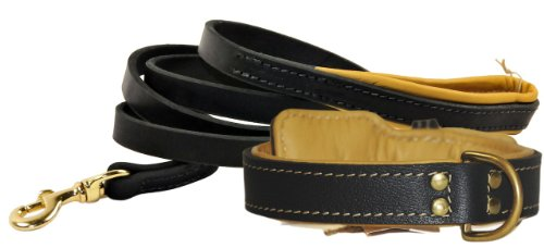 """Dean and Tyler Bundle – One """"Italian Tailor"""" Collar Brown Padding 30″ by 1-1/2″ With One Matching """"Soft Touch"""" Leash, 6 FT Brass Snap Hook – Black"""