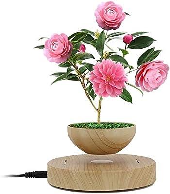 Levitating Air Plant Pot, Magnetic Levitation LED Floating Rotation Planter  Decorative Accessories DIY Gift