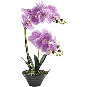 GTIDEA 19 inches Artificial Phaleanopsis Realistic PU Fake Orchid Bonsai Plant with Black Ceramic Pot Home Office Bedroom Table Centerpieces Decor Light Purple