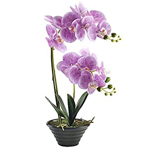 "GTIDEA 19"" Artificial Phaleanopsis Realistic PU Fake Orchid Bonsai Plant with Black Ceramic Pot Home Office Bedroom Table Centerpieces Decor Light Purple 58"