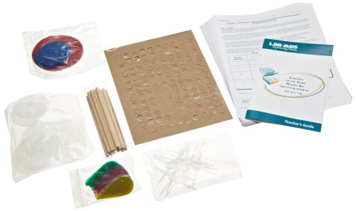 Amazon.com: Lab-Aids Sublevel Orbitals of the Atom Model Set Kit ...