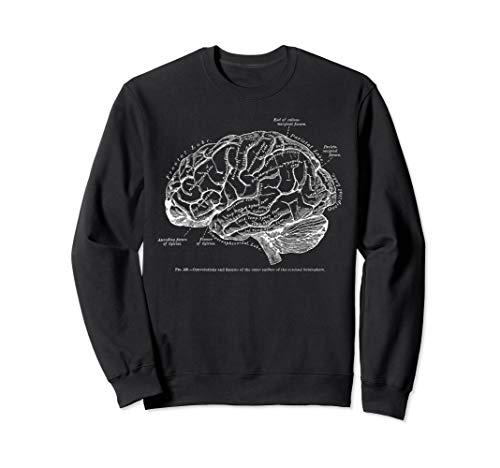 Vintage Human Brain Anatomy Sweatshirt