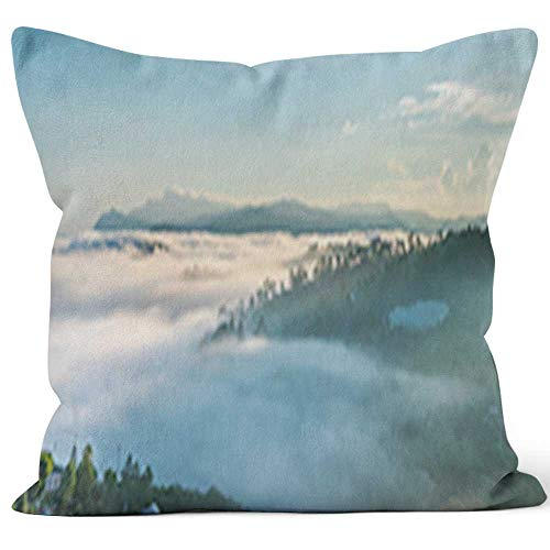 (Dawn on The Plateau Pine Forests Throw Pillow Cushion Cover,HD Printing Decorative Square Accent Pillow Case,16