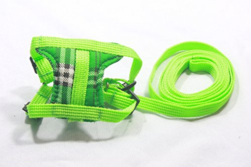 Leashes Lead Pet & Soft Harness,Guinea Pig,Rat,Hamster,Rabbit,Ferret,Prairie Dog (Light Green)