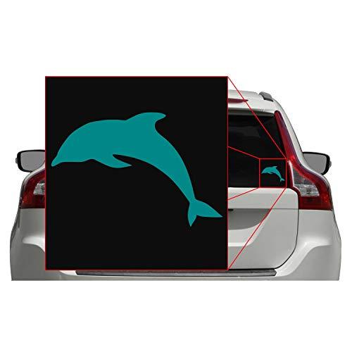 Dolphin Window - 5