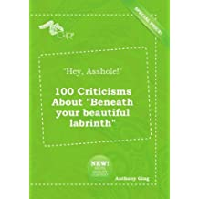 """""""Hey, Asshole!"""" 100 Criticisms About """"Beneath your beautiful labrinth"""""""