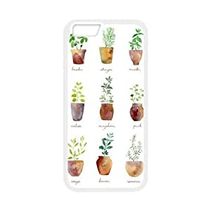 iPhone 6 Plus 5.5 Inch Cell Phone Case White Culinary Herbs CBVNDEA14720