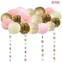 19 Pcs Pink and Gold Tissue Paper Flowers Pom Poms Lanterns and Garland for Baby Shower Party Decoration