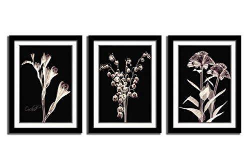 3 Panels Canvas Wall Art Decor in Floral Painting Modern Artwork Elegant Lily of Valley Orchid Xray Flowers Giclee Print Ready to Hang for Home Decoration 12x16in