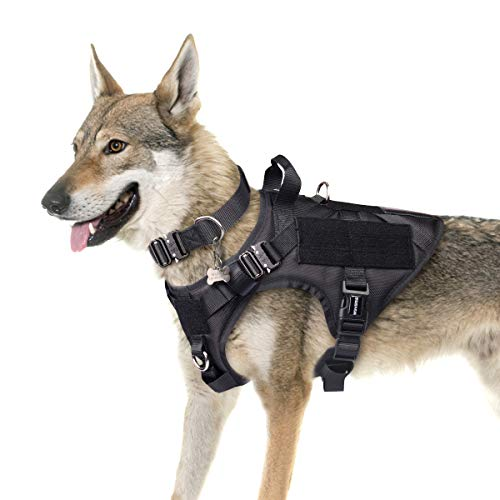 WINSEE Tactical Dog Harness Large with 2X Metal Buckles, Working Dog MOLLE Vest with Handle & Loop Panels, No Pull Adjustable Training Pet Harness with Leash Clips for Walking Hiking Hunting
