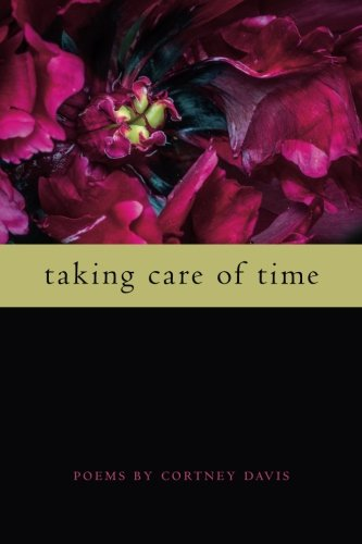 Taking Care of Time (Wheelbarrow Books)