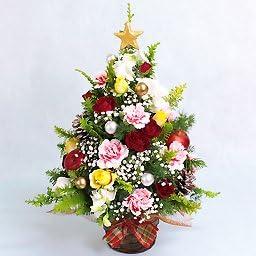 すべての美しい花の画像 ベスト50 アレンジメント クリスマス の 花