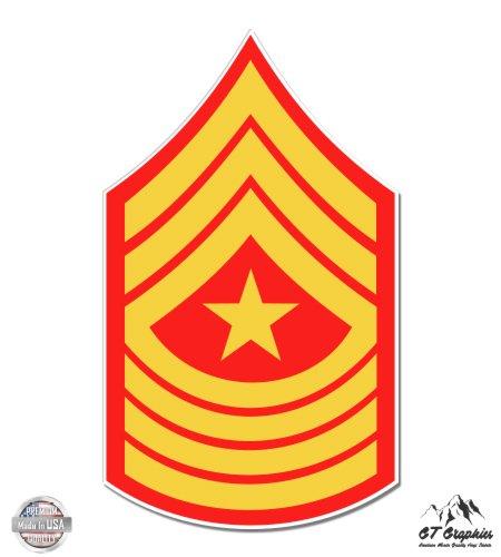 USMC E9 Sgm Sergeant Major Rank - 3