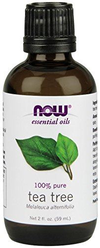 NOW Solutions Tea Tree Essential Oil, 2-Ounce