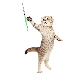 Aigou Cat Wand with Teaser Toys, Long Dangler Stick Fishing Rod with 5 Pieces Fun Teaser and bell Refill Pack for Cat and Kitten (Blue)