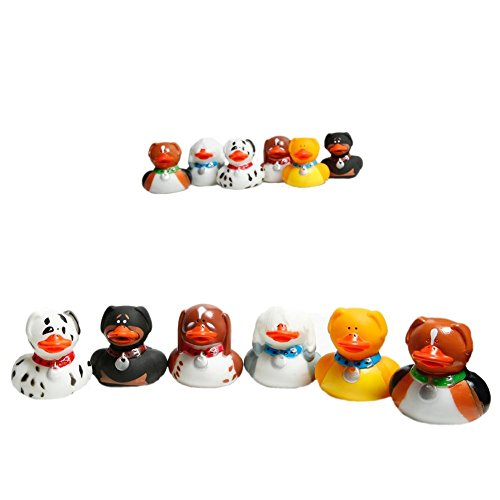 Fun Express Rubber Duckys 1 Pack