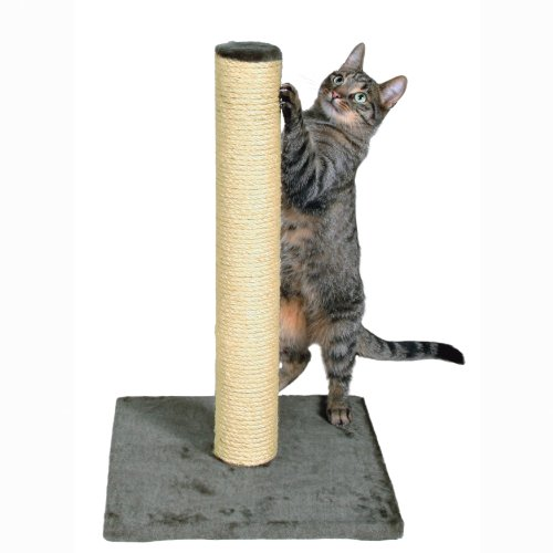 TRIXIE Pet Products Parla Scratching Post, - Carpet Cat Scratching
