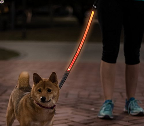 Light Up LED Dog Leash - USB RECHARGEABLE - (charging cable include) - Industrial Strength - Comfort Grip Handle (Orange) (On Sale)