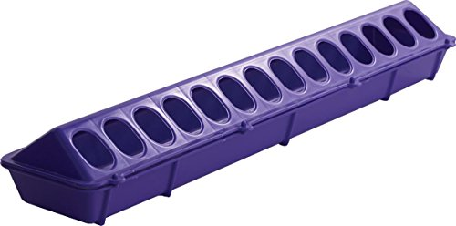 Purple Chick - Little Giant Plastic Flip-Top Poultry Ground Feeder, Purple