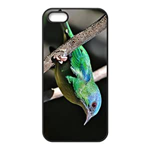 Green Sparrow Hight Quality Plastic Case for Iphone 5s