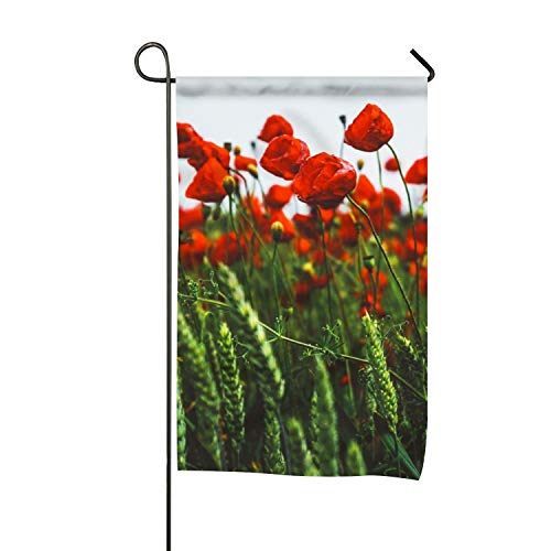 QIFEN Red Poppies Garden Flag Decorative Summer Fall Autumn Winter Double Sided Flags 12
