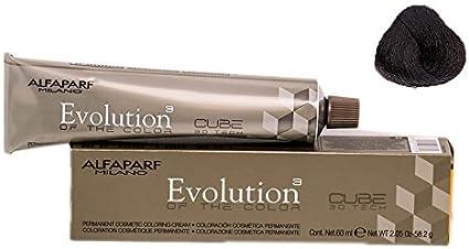 Alfaparf Evolution Tinte Capilar 5,14-60 gr: Amazon.es: Belleza