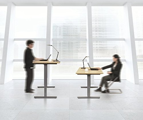 Sit Stand Desk for Health