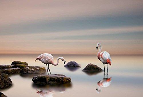 FHYGJD Flamingo Birds Lake Stones Art Print Canvas Poster,Home Wall Decor(24x36 inch) by FHYGJD