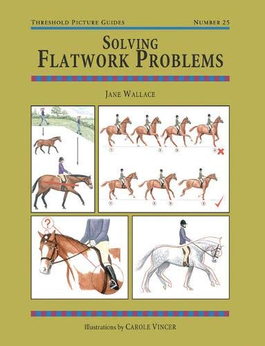 Solving Flatwork Problems (Threshold Picture Guides)