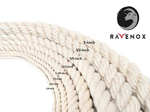 Ravenox Colorful Twisted Cotton Rope   (White)(1 Inch x 250 Feet)   Made in The USA   Custom Color Cordage for Sports, Décor, Pet Toys, Crafts, Macramé & General Use   Rope by The Foot & Diameter by Ravenox (Image #3)