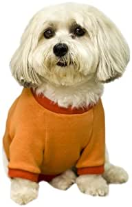 Scooter's Friends Medium Halloween Boo Dog Sweatshirt, Orange