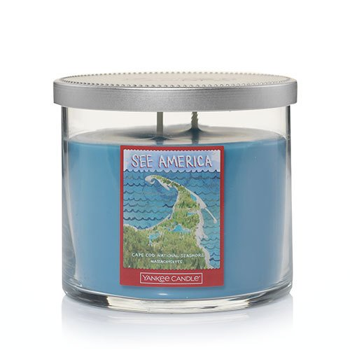 Yankee Candle Cape Cod National Seashore Medium 2-Wick Tumbler Candle